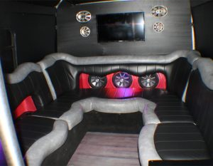 20 passenger Austin Party Bus